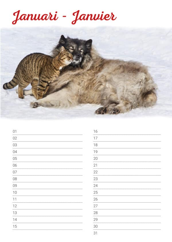 verjaardagskalender 'Animals in Love' Januari