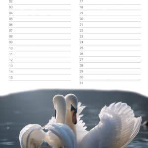verjaardagskalender 'Animals in Love' Mei