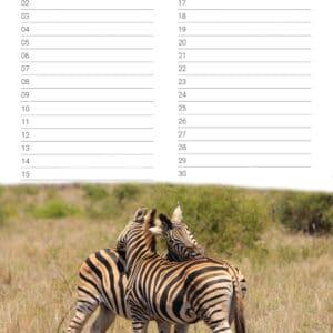 verjaardagskalender 'Animals in Love' September