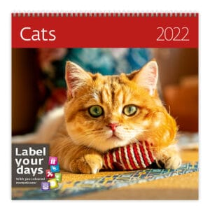 Muurkalender Cats 2022