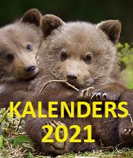 Collectie 2021