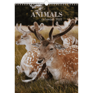 Muurkalenders Animals 2022