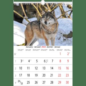 Muurkalenders Animals 2022 Januari